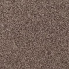find this pin and more on carpet