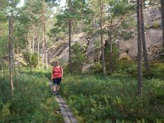 Nationaal Park Tiveden ligt tussen de twee grote meren van Zweden en bestaat vooral uit rotsen en dennen. Dat is dus heerlijk klauteren met kinderen.