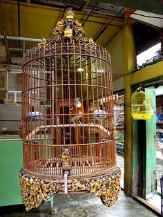 Elaborate birdcage at the bird market, Bandung.