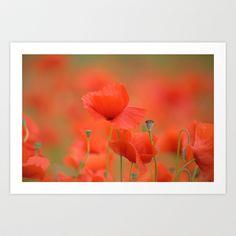 Common red poppies 1876 Art Print by metamorphosa - $22.88