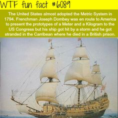 WTF Facts - Page 516 of 1045 - Funny, interesting, and weird facts Wtf Fun Facts, Funny Facts, Random Facts, Random Stuff, Interesting Information, Interesting History, Interesting Facts, The More You Know, History Facts
