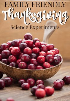 Learning doesn't have to stop over the holiday season! These Thanksgiving science experiments are fun for the whole family!