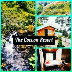 Hello Everyone!! Are You Bored Of Working From Home ?? You Can Enjoy Your Work On Hills Of Nainital Book Your Stay Now At Cocoon Resort. For booking :- thecocoonresort.com Nainital, Are You Bored, Camps, Hello Everyone, Best Hotels, Resorts, House Styles, Book, Nature