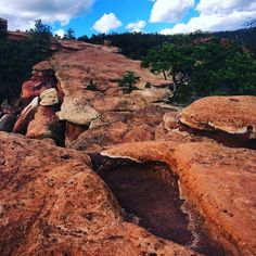 A Rocky Trail in the Garden of the Gods // Colorado Springs, CO