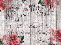 Bügelbild Rose  Paris Schrift french Shabby  1695
