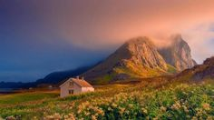 House in a field in Norway..... - Pixdaus