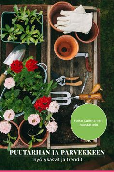 Crops and trends for the balcony and garden. Free Ebook by Birgit Schattling Source by garteninspekt Lawn And Garden, Home And Garden, Drawing Room Furniture, Garden Drawing, Gardening, Home Decor Styles, Spring Wedding, Free Ebooks, Trends