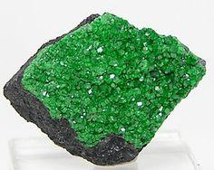 Uvarovite Green Druzy Garnet Brilliant Crystals by FenderMinerals #stones,#semiprecious,#gems,#gemstones,#cabochon,#cabachon,#jewelry,#wirewrap,#jewelrysupply,#jewel,#etsy,#fenderminerals,#fendergems,#minerals,#rocksandminerals,#crystals,#stones,#etsy