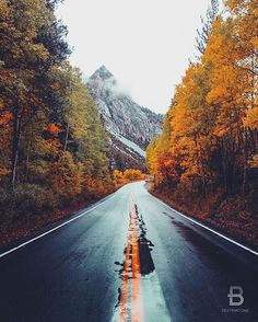 """""""June Lake Loop, CA, USA By: @jordanherschel Share your favorite #Thanksgiving destinations and include #colormeautumn for a chance to be featured on…"""""""