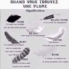 Signes des anges - les plumes et leur signification