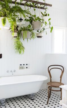 House Tour: An Eclectic Modern Country Home. Love the Ladder with Hanging Plants… House Tour: An Eclectic Modern Country Home. Interior Design Trends, Home Design Decor, Diy Design, House Design, Design Ideas, Interior Design Plants, Plant Design, Bath Design, Modern Design