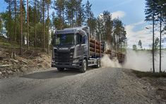 Download wallpapers Scania R650, 4k, 2017 truck, 6x4, timber carrier, trucks, R-series, Scania