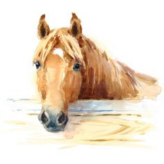 Horse In Stable Watercolor Animal Illustration Hand Painted Stock Illustration - Illustration of farm, ranch: 84684020