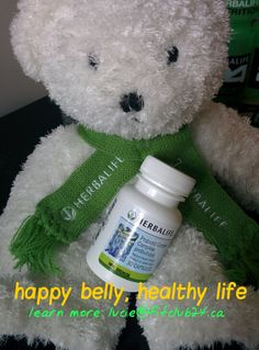 After illness, stressful periods, or antibiotics, re-set your digestive health with Herbalife probiotic. Ask me for details! I'm starting mine today :) Herbalife, Healthy Life, Stress, Teddy Bear, Learning, Easy, How To Make, Healthy Living, Anxiety