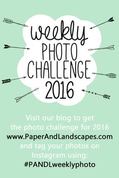 Are you ready for 2016? Let's greet the new year together with a positive attitude and a brand new Weekly Photo Challenge!