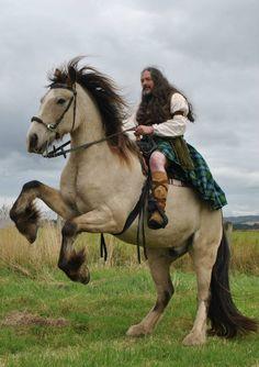Highland Warrior on a buckskin draft