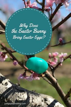 How the Easter Egg Hunt Become An American Tradition