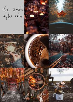 thelostandlovely: autumn bucket list moodboard baking, knitting, pumpkin picking, bonfires, coffee and cuddling Fall Inspiration, Design Inspiration, Autumn Cozy, Autumn Fall, Fall Harvest, Autumn Coffee, Autumn Feeling, Autumn Nature, Autumn Photography
