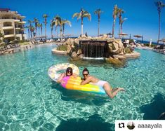 Every day is a pool day! Start packing your bags, we have the perfect plan for you and your best friend! Your Best Friend, Best Friends, Start Pack, Pack Your Bags, Pool Days, Resort Spa, Beach Resorts, Villa, Packing