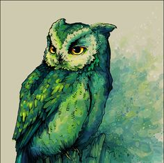 watercolor owl images | ... , green, illustration, owl, painting - inspiring picture on Favim.com