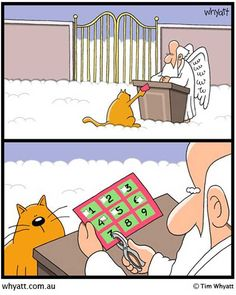 cat's punch card - don't know why, but this made me lol