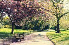 Spring in London by sacadura on DeviantArt