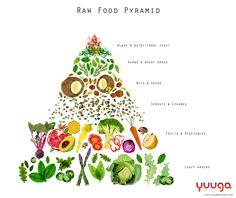 Raw food pyramid for Yuuga Kemistri