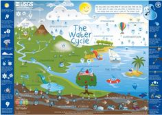 Free Water and Water Cycle Resources - Homeschool Den