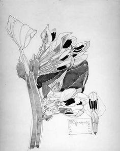 Charles Rennie Mackintosh | Black Bean, Walberswick | The Met