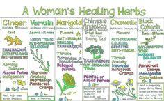 Woman's Healing Herbs