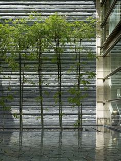 Leedon Park House  // Foster + Partners - Singapore