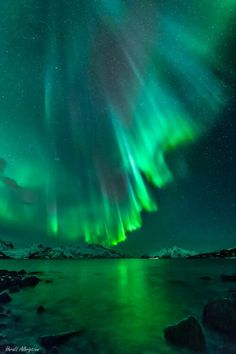 Incredible northern lights display over Tromsø, Norway. Taken by Harald Albrigtsen