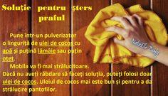 Soluție pentru șters praful Cleaning, Houses, Diy, Home Cleaning