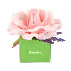 BloemBox Rose & Lavender Sachet Summer Blush #oprahsfavoritethings