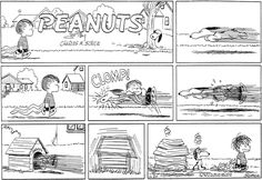 November 24, 1957 - Snoopy's after Linus's blanket