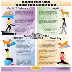 @DogTread Fun.Dog.Fitness by PetZen  #Infographic - What's good for you is good for your dog!