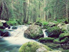 Slovakia - Nature of Low Tatras Team Building Activities, Bratislava, National Parks, Environment, Europe, River, Mountains, Fall, Nature