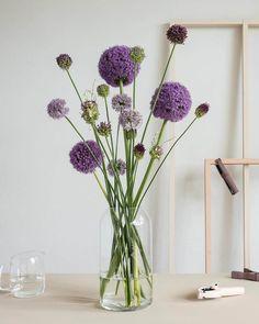Atelier Landing page Flower Power, Gerbera, Green Plants, Love Flowers, Floral Arrangements, Glass Vase, Floral Design, Bouquet, Wreaths