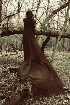 Witch in the woods...