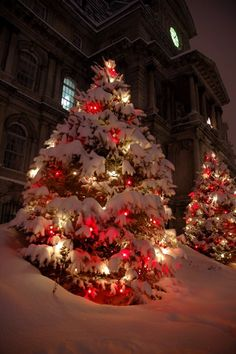 Love Christmas scenes where lights shine through freshly fallen snow-