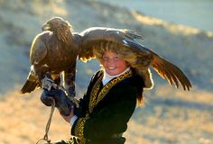 the only known female golden eagle hunter in Mongolia Among the Kazakh people of the Altai mountain range in western Mongolia, hunting with golden eagles has been a way of life for thousands of years Mongolia, Rapace Diurne, Eagle Hunting, Mind Blowing Pictures, Girl Train, Golden Eagle, 13 Year Olds, Birds Of Prey, Kazakhstan