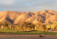 Brazeau Thoroughbred Farms, Hemet, CA Us Vacation Spots, Thoroughbred, Horse Racing, Stables, Farms, Equestrian, Golf Courses, Nostalgia, Places To Visit
