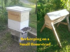 The Rural Economist: Beekeeping on a Small Homestead