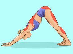 Embrace Pet Insurance, Yoga Lessons, Yoga Mantras, Yoga Positions, Yoga Benefits, Yoga Sequences, Injury Prevention, Yoga Challenge, Aerobics