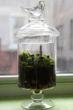 Going For A Ride Moss Terrarium Moss Terrariums Crafts
