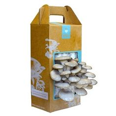 Easy-to-Grow Mushroom Garden for $19.95.  I totally want to grow my own mushrooms!