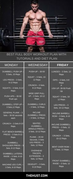 Total Body Workout Plan for Fat Loss and Muscle Gain 2019