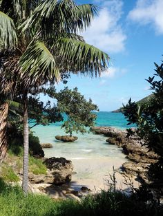 One of Australia's best kept secrets: Why you Must Visit Lord Howe Island