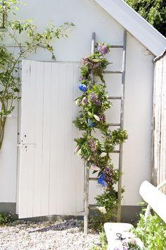 5 decoratietips voor het aankleden van je tuin of terras met bloemen Roomed | roomed.nl