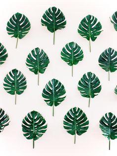 Palm leaf wallpaper decor: http://www.stylemepretty.com/2017/05/22/palm-inspired-north-carolina-wedding/ Photography: Olivia Suriano of Nancy Ray Photography - http://www.nancyrayphotography.com/
